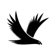 Eagle Symbol 09458
