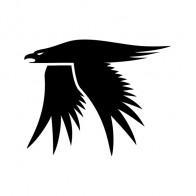 Eagle Symbol 09461