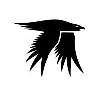 Eagle Symbol 09462