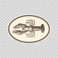Lobster 10035