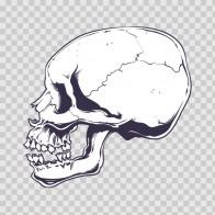 Death Skull 12494