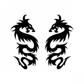 Pair Of Dragons 00504