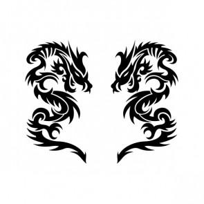Pair Of Dragons 00507