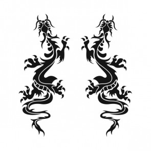 Pair Of Dragons 00508
