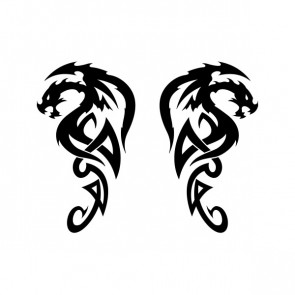 Pair Of Dragons 00516