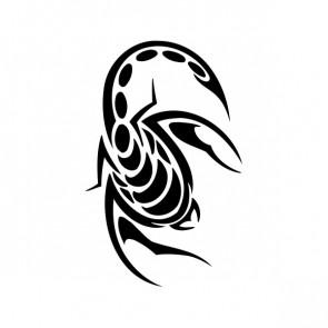 Scorpion 00754