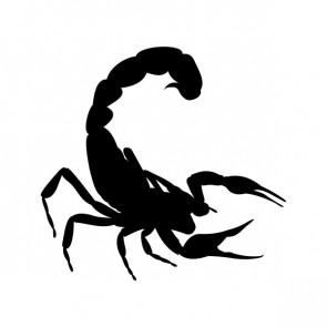 Scorpion 00757