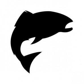 Salmon Fish 00835