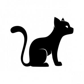Domestic Cat Pet 00856