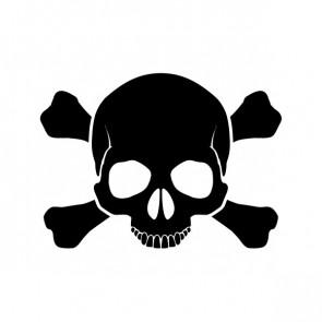 Crossbone Skull 00895