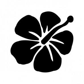 Hibiscus 00914
