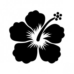 Hibiscus 00915