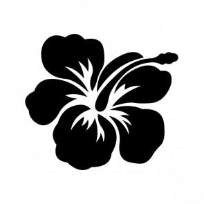 Hibiscus 00919