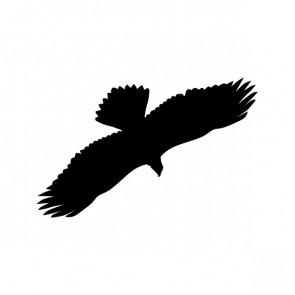 Eagle Flying Figure 00951