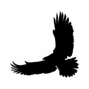 Eagle Flying Figure 00953