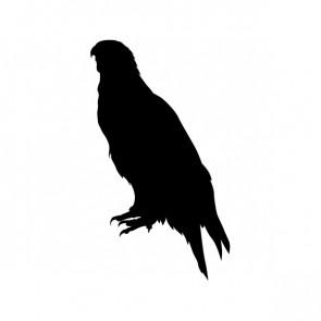 Eagle Standing Figure 00954