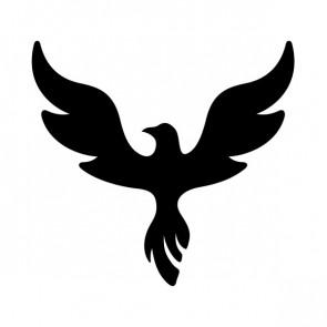 Phoenix Rising 00958
