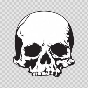 Cracked Skull 02437
