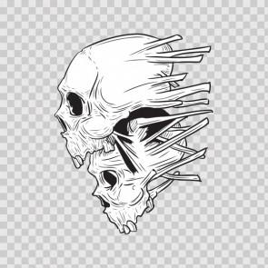Combination Of Two Skulls 02448