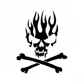 Flames Skull 02540