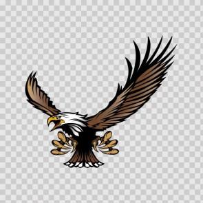 Bald Eagle 03287