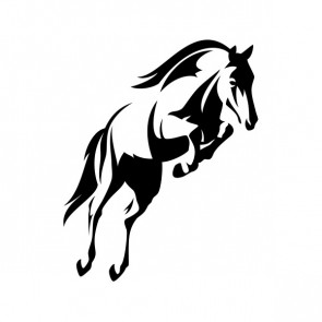 Horse Jumping 03465
