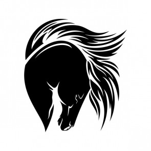 Horse Head 03497