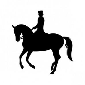 Horse Riding 03758