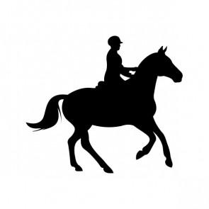 Horse Riding 03762