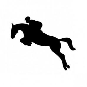 Horse Riding 03767