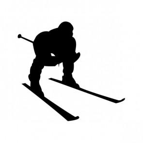 Ski Figure 04110