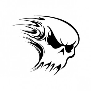 Ghost Skull 04474