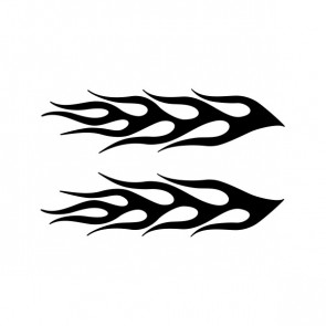 Pair Of Flames 04503