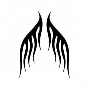 Pair Of Flames 04529
