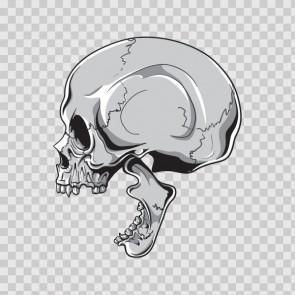Gray Black Skull 04902
