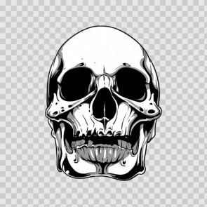 Gray Black Skull 04971
