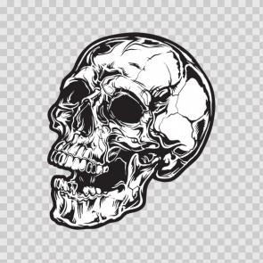 Gray Black Skull 04984