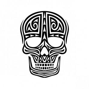 Ancient Skull 05193