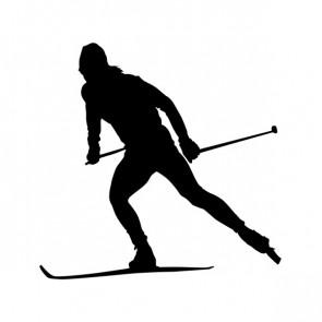 Winter Sports Skiing Ski 05374