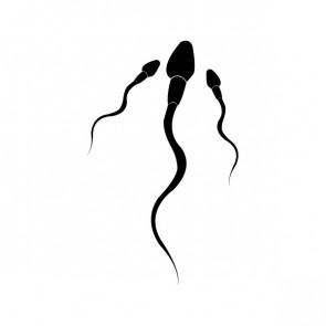 Sperm Attack 05429