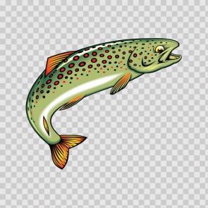River Trout 05652