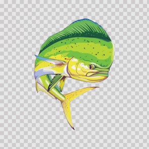 Dorado Dolphin Fishing 05955