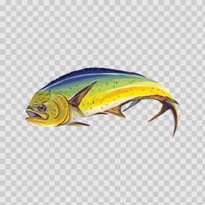 Dorado Dolphin Fishing 06005