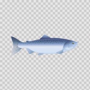 Trout 06022