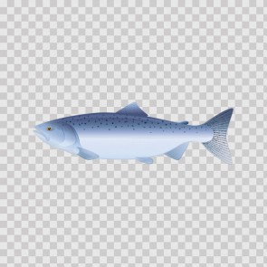 Trout 06023