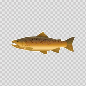 Brown Trout 06041