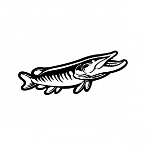 Pike Fish 06079
