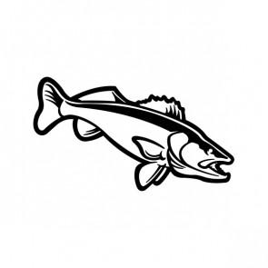 Salmon Fish 06081