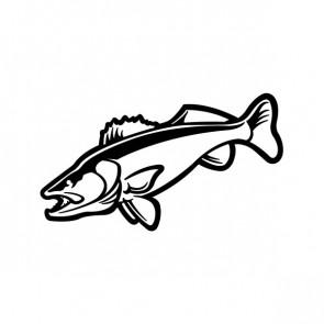 Salmon Fish 06082