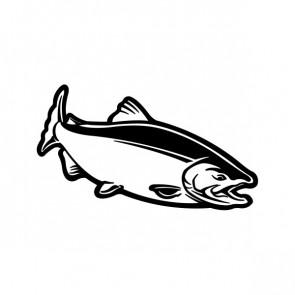 Salmon Fish 06083